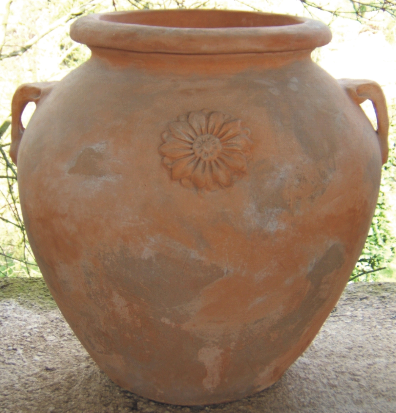 I vasi in terracotta for Vasi terracotta prezzi